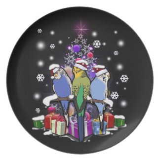 Budgerigars with Christmas Gift and Snowflakes Plate