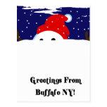 Buffalo Snowman
