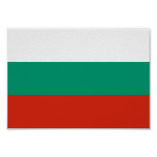 Bulgaria Flag Poster