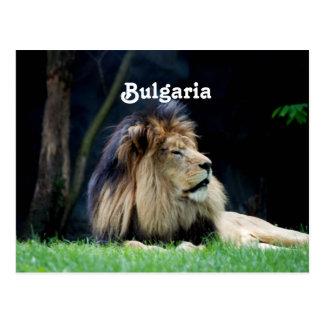 Bulgaria Lion Postcard