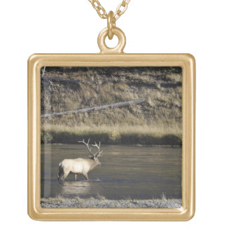 Bull Elk Crossing Madison River, Yellowstone 2 Gold Plated Necklace