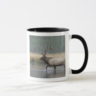Bull Elk crossing river in snowstorm, Mug