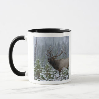 Bull Elk in snow calling, bugling, Yellowstone Mug