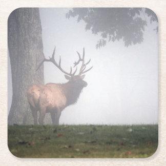 Bull Elk Square Paper Coaster