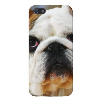 Bulldog iPhone 5 Covers