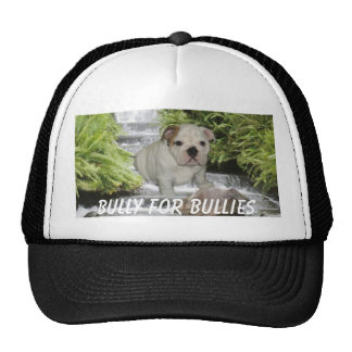 Bulldog Puppy Hat Waterfall