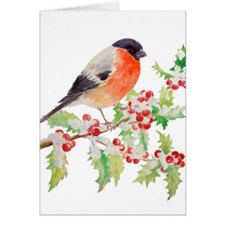 Bullfinch on Holly Branch in Snow Greeting Card