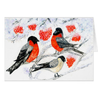 Bullfinches and Rowan Card