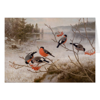 Bullfinches in winter landscape CC0967 Von Wright Card