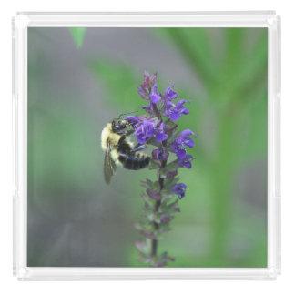 Bumble Bee, Perfume Tray.