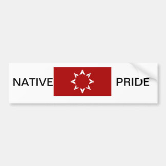 BUMPER STICKER -LAKOTA
