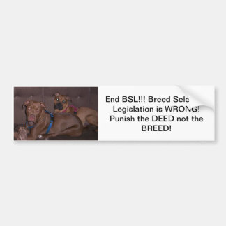 Bumpersticker end BSL Bumper Sticker
