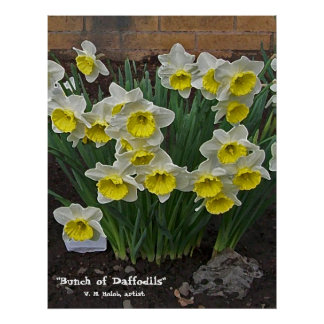 """""""Bunch of Daffodils"""" Poster"""