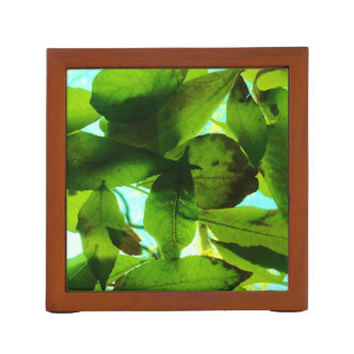 Bunch of Leaves on Sky background Desk Organiser