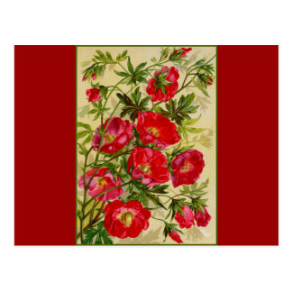 Bunch of Red Flowers Postcard