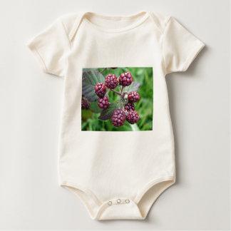 Bunch of Unripe Blackberries Baby Bodysuit