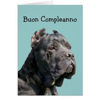 Buon compleanno  Birthday Cane Corso Greeting Card