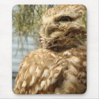 Burrowing Owl Baby Bird Wildlife Animal Mouse Pad
