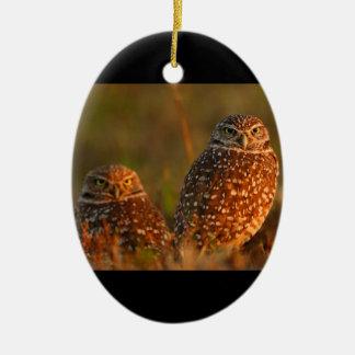 burrowing owl couple ceramic oval decoration
