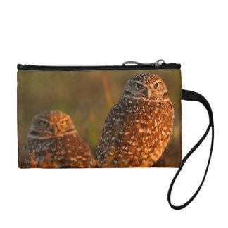 burrowing owl couple change purse