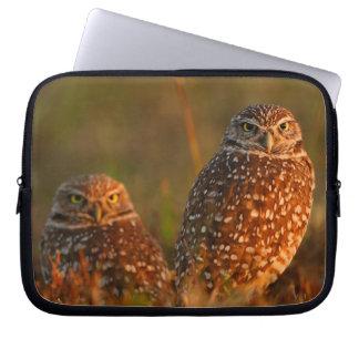 burrowing owl couple computer sleeves