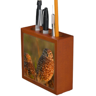 burrowing owl couple pencil holder