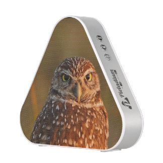 burrowing owl couple bluetooth speaker