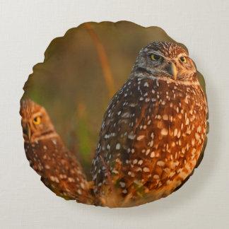 burrowing owl couple round cushion