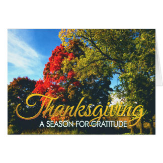 Business Thanksgiving card 17