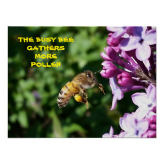 Busy Bee - Employee Motivational Poster