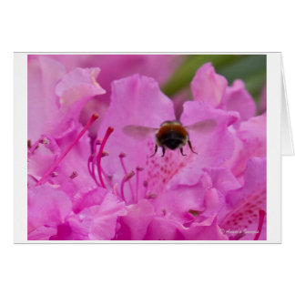 Busy Bee Note card