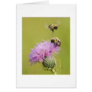 Busy Bees Card