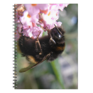 Busy Bumblebee and Pinkl Flowers Notebook