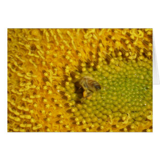 Busy Honeybee Card