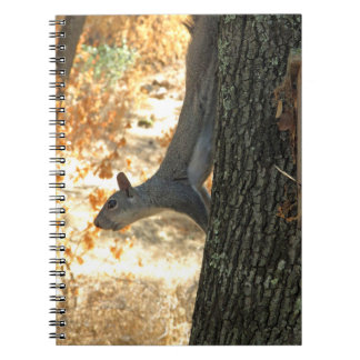 Busy Squirrel Notebook