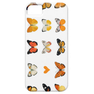 Butterflies case