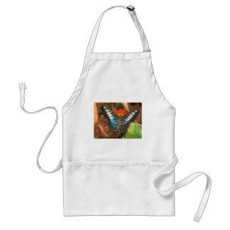 butterflies clipper standard apron