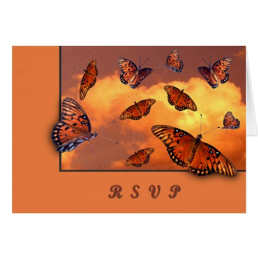 Butterflies in the Sky Cards