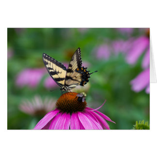 Butterfly and Bee Note Card