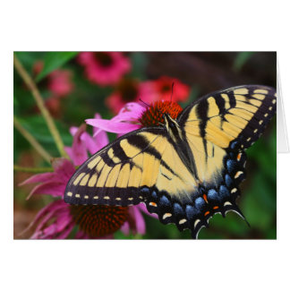 Butterfly and Flowers Note Card