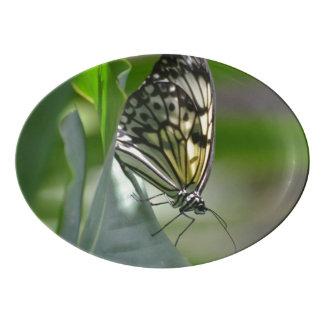 Butterfly Beauty Porcelain Serving Platter