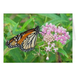 Butterfly    by JR Hager II Note Card
