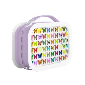 Butterfly Collage Lunchboxes