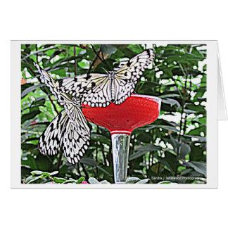 Butterfly Dance Note Card