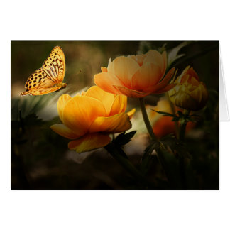 Butterfly & Flowers - Shades of Orange1 Card