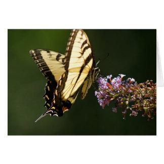 Butterfly Flutter Blank Note Card
