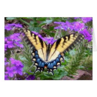 Butterfly Graces My Garden Card