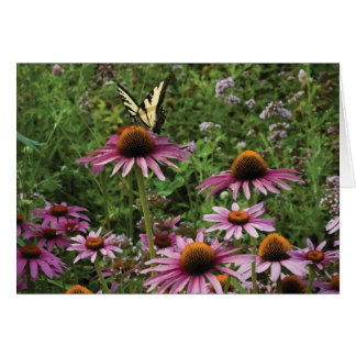 Butterfly Landing on Flowers at Kosteva Acres Note Card