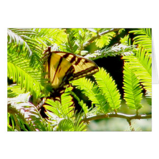 Butterfly of love_ stationery note card