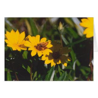 Butterfly on a flower card